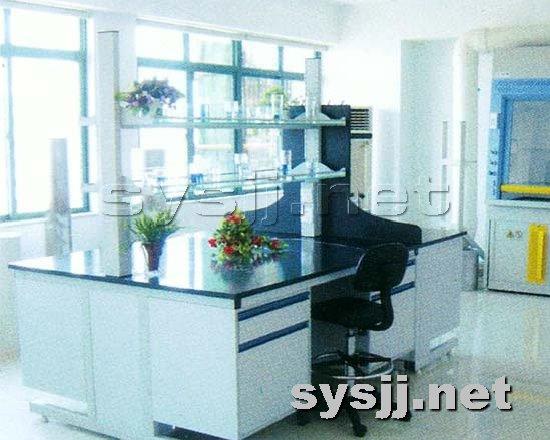 实验室家具提供生产悬挂实验台厂家